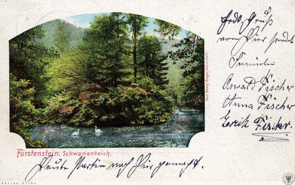 Alte deutsche Postkarte mit dem Schwanenteich am Schloß Fürstenstein