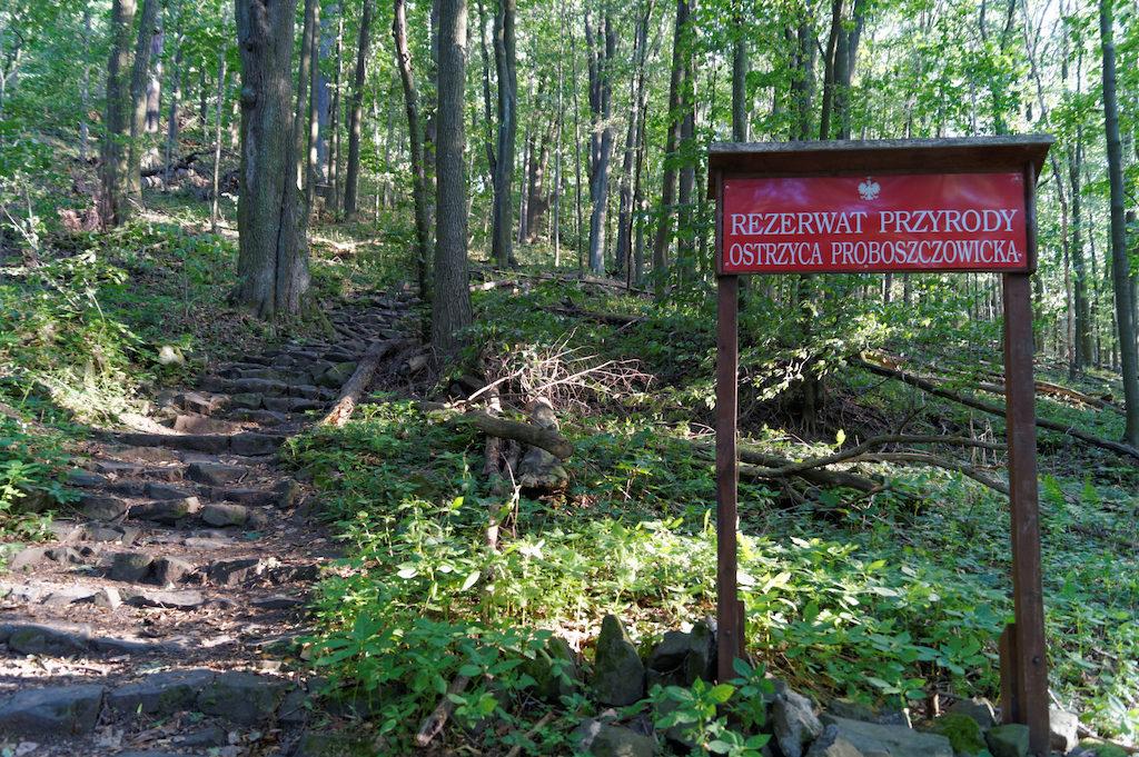 Ostrzyca Proboszczowicka Naturschutzgebiet nach Bober-Katzbach-Vorgebirge