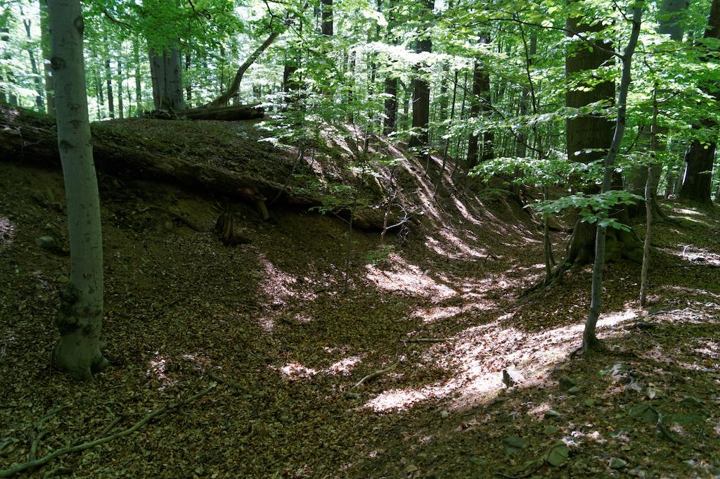 Vor der Burg befinden sich deutlich sichtbare Überreste von Böschungen, die von früheren Verteidigungsanlagen bewahrt wurden