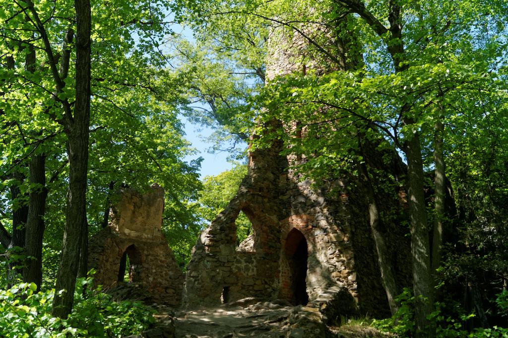 Alte Burgruine Fürstenstein